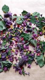 Tee mit wilden Blüten